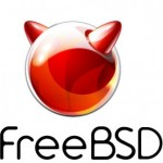 password root freebsd